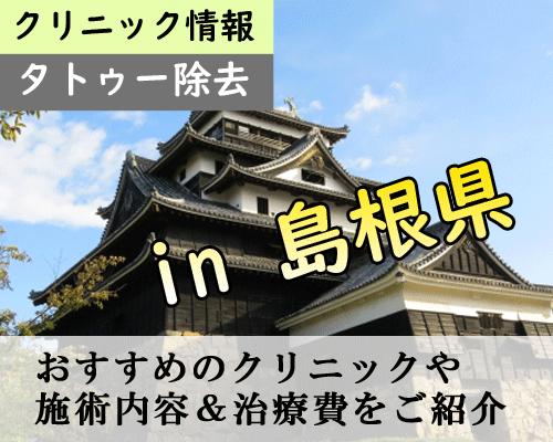 【最新】島根県でタトゥー除去できる安くて痛くないクリニックまとめ